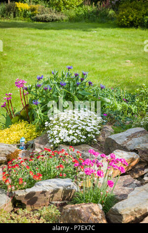 A small rock garden with Spring flowers beside a lawn in an English garden in May - Stock Photo
