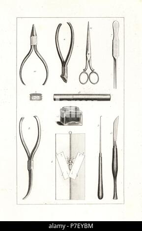 Butterfly collector's tools from the 18th century: pins 3, curved needle to support antennae 5, clockmaker's tweezers 7, entomologist's tweezers 8, pliers 10, pin cutters 11, scissors 12, pin case 13, gluepot 14, and scalpel 15. Steel engraving by the Pauquet brothers from Hippolyte Lucas' Natural History of European Butterflies, Histoire Naturelle des Lepidopteres d'Europe, 1864. - Stock Photo