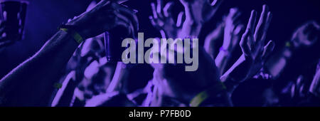 People dancing at a concert - Stock Photo