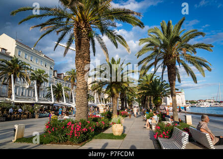 Riva, a seaside promenade lined with palm trees and cafes and restaurants, Split, Croatia - Stock Photo