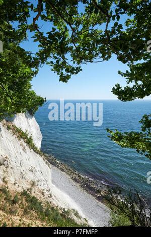 Chalk coast in Sassnitz, Jasmund National Park, Island of Rügen, Baltic coast, Mecklenburg-Western Pomerania, Germany - Stock Photo