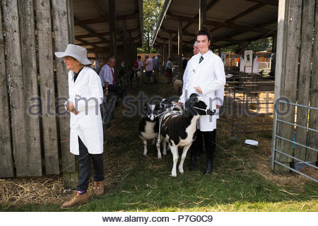 Detling, Kent, UK. 6th July 2018. The Kent County Show opens its annual three day extravaganza of all things agricultural with prize-giving to everything from livestock to local soft fruit produce and cake-making. - Stock Photo