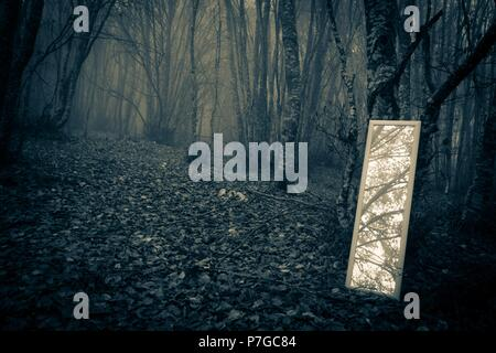 Little mirror in the misty forest - Stock Photo