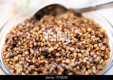 Kutya or kutia cereal dish, macro closeup, Russia and Ukraine Christmas Eve traditional meal, made from wheat berries, poppy seeds, raisins and honey, - Stock Photo