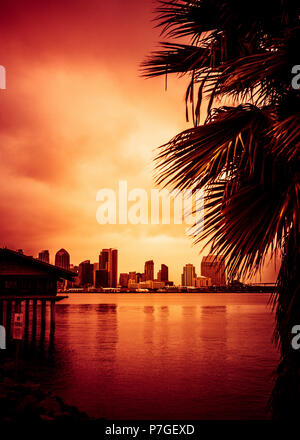 Beautiful sunset over San Diego skyline with bay and palm trees - Stock Photo