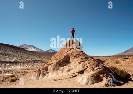 Standing high and strong. Area: Volcán Ollague in Avaroa National Park (Parque Nacional Eduardo Avaroa), Uyuni, Bolivia - Stock Photo