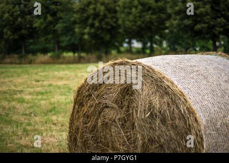 hay bale Germany - Stock Photo