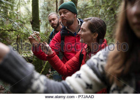 Curious couple hiking in woods - Stock Photo