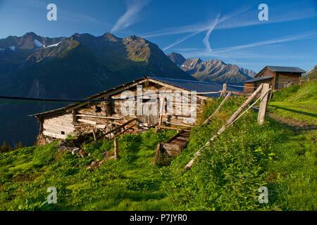 Austria, Tyrol, Zillertal, Wildalpe on the Berliner Höhenweg - Stock Photo