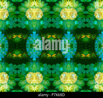 Photographic flower pattern, symmetrical - Stock Photo