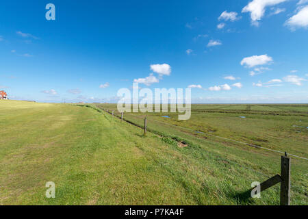 Germany, Lower Saxony, East Frisia, Juist, the salt marshes on the mudflat side - Stock Photo