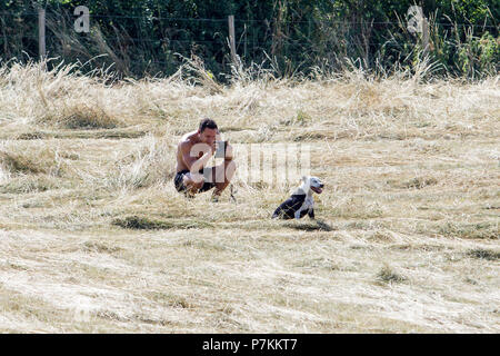 Bath, UK, 7th July, 2018.  As Bath enjoys another very hot and sunny day a man is pictured in Bathwick Meadow as he takes a photograph of his dog. Credit: lynchpics/Alamy Live News - Stock Photo