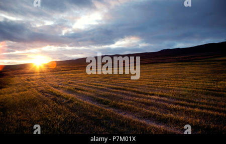 Hill, field, Svinavatn, Iceland, landscape - Stock Photo