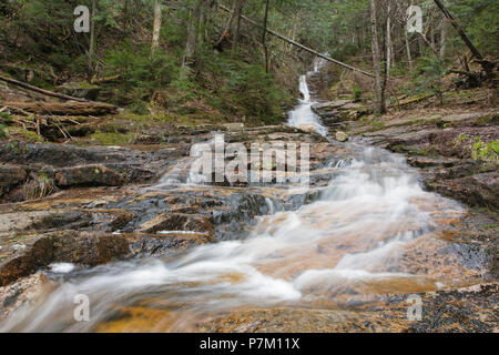 Kedron Flume in Hart's Location, New Hampshire during the spring months. This waterfall is within Crawford Notch State Park. - Stock Photo