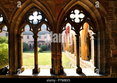 France, Haut Rhin, Alsace Wine Route, Colmar, Unterlinden Museum, the cloister - Stock Photo