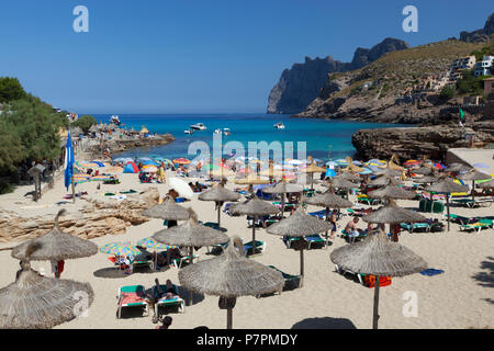 View over beach of Cala San Vincente in summer - Stock Photo