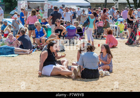 Cheshire, UK. 08 July 2018Stockton Heath Festival in Cheshire, England, UK, held their eleventh fete on the events field where hundreds of people braved the heatwave and enjoyed themselves Credit: John Hopkins/Alamy Live News - Stock Photo