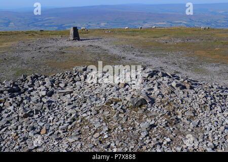 Ingleborough Trig Point which is on the summit of Ingleborough Mountain top. - Stock Photo