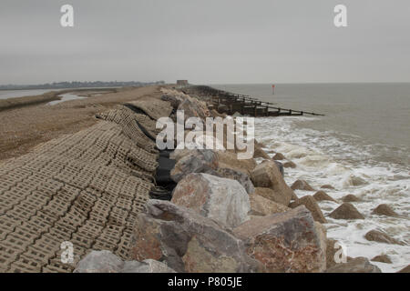 The sea defences and coastal erosion on the spit separating the River Alde from the North Sea at Aldeburgh, Suffolk - Stock Photo