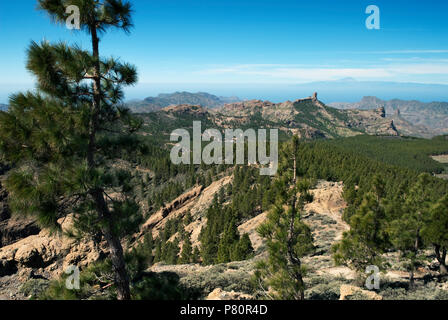 View towards Roque Nublo from Pozo de las Nieves - Stock Photo