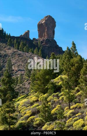 Roque Nublo in centre of island of Gran Canaria - Stock Photo