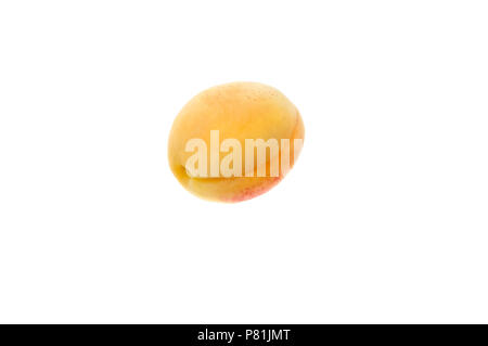 One juicy ripe apricot. On a white background. - Stock Photo
