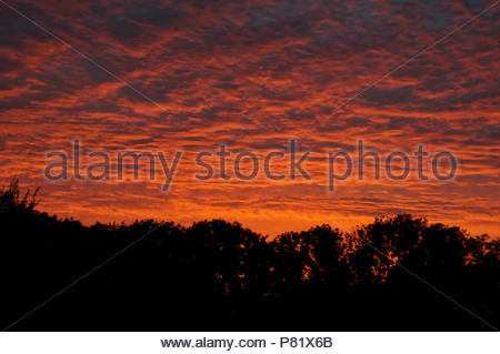 Closed cloud ceiling at sunset red light - Stock Photo