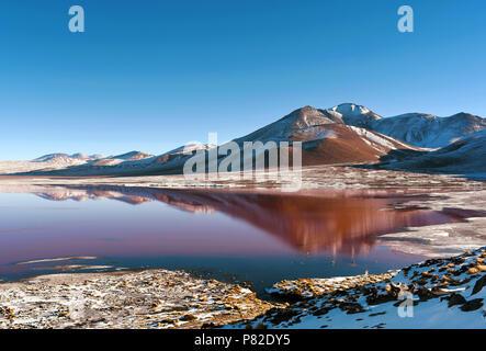 Laguna Colorada (Red Lagoon) shallow salt lake in the southwest of Bolivia, within Eduardo Avaroa Andean Fauna National Reserve. - Stock Photo