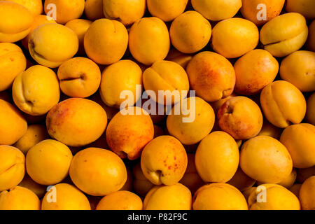 fresh apricot yellow abstract fruit colorful pattern texture background - Stock Photo