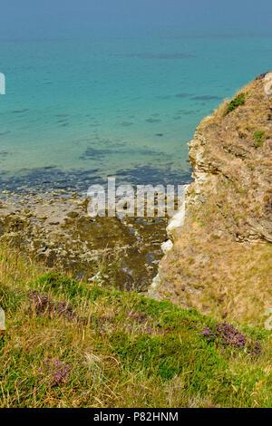 HOPEMAN MORAY SCOTLAND HEATHER FLOWERS IN SUMMER AND HEADLAND OVERLOOKING THE SEA ALONG THE MORAY COAST TRAIL - Stock Photo