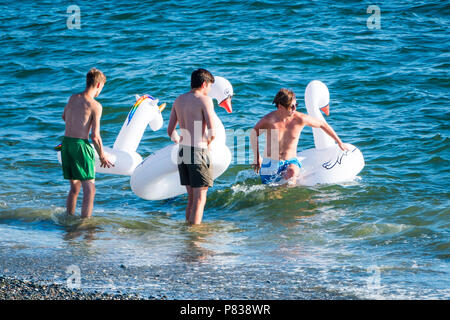 UK Weather: Summer evening in Aberystwyth Wales  Aberystwyth Wales UK, 08 July 2018. UK Weather: Four young men take to the sea on this years's 'must have' seaside accessory - the inflatable animal - in this case two  swans and an unicorn Photo credit : Keith Morris / Alamy Live News - Stock Photo