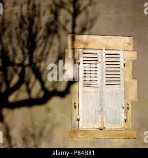 Shadow of a bare tree on closed shutters of a sunny house, Auvergne, France - Stock Photo