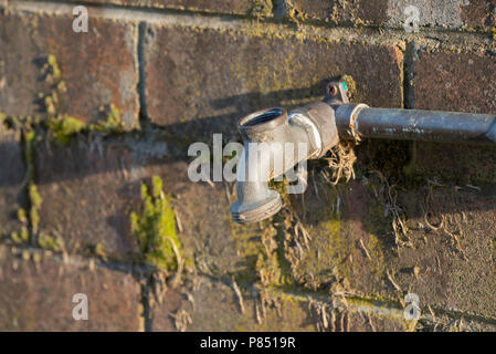 OUTDOOR WATER TAP ON A BRICK WALL Stock Photo: 25287090 ...
