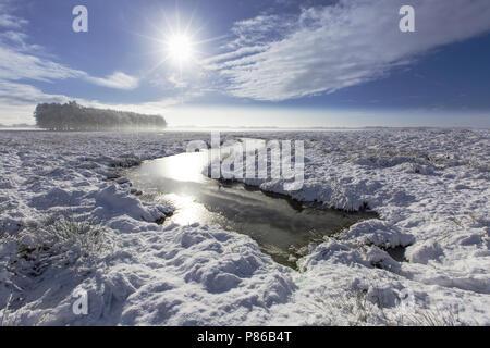 Besneeuwd landschap, Landscape with snow - Stock Photo