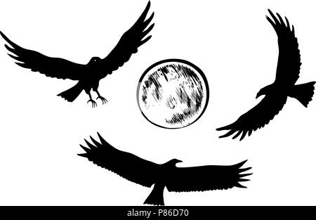 Flying eagle silhouettes, vector illustration - Stock Photo