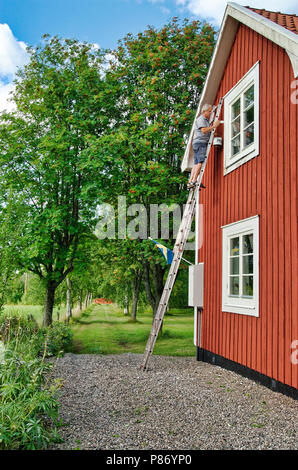 Man on a ladder renovating a red house in Sweden - Stock Photo