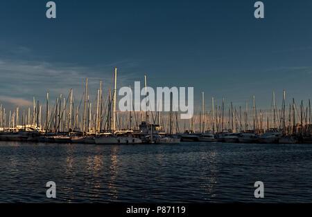 Boats moored in the marina of the Real Club Nautico de Palma Marina (Royal Nautical Yacht Club), Palma de Mallorca - Stock Photo