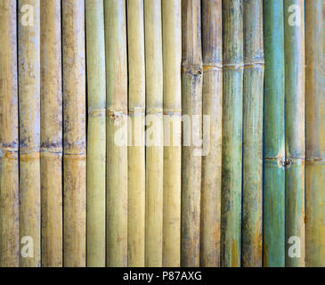 Cut a piece of green bamboo wood, bamboo wood commonly used types, through the bamboo wood to dry well. - Stock Photo