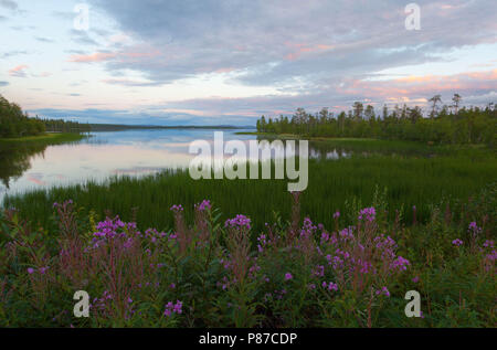 Lake Jerisjärvi in Muonio, Lapland, Finland - Stock Photo