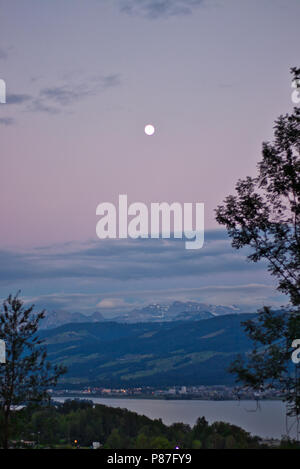 Moon light at the lake - Stock Photo