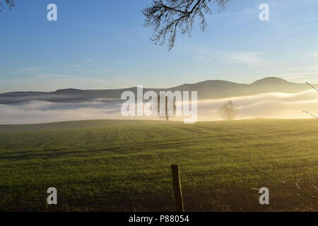 Mist in the Highlands - Stock Photo