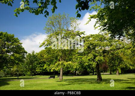 UK, Northern Ireland, Co Antrim, Carrickfergus, Shaftesbury Park - Stock Photo