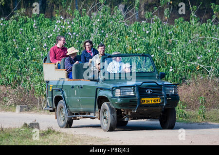 Tourists on Tiger safari in India - Stock Photo