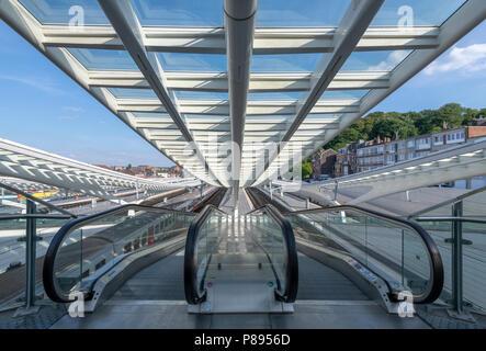 Liege Guillemins Station in Belgium, Architect Santiago Calatrava - Stock Photo