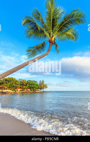 The nature of Koh Samui in Thailand. - Stock Photo