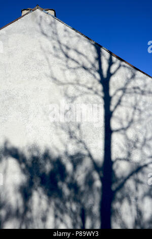 Shadow of a tree on a wall of a farm, Auvergne, France - Stock Photo