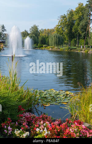 several fountains in a lake with water lilies and reeds, surrounded by green trees, lawns and flowers, against the blue cloudless sky . For your desig - Stock Photo