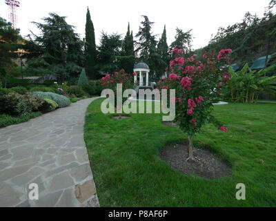 flowering with pink color young trees on a lawn near a stone path in a park among green bushes and trees against a white gazebo and clear sky. place o - Stock Photo