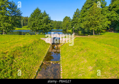 A small source of stone is flowing directly into a large, deep pond. Around the trees, greens . For your design - Stock Photo