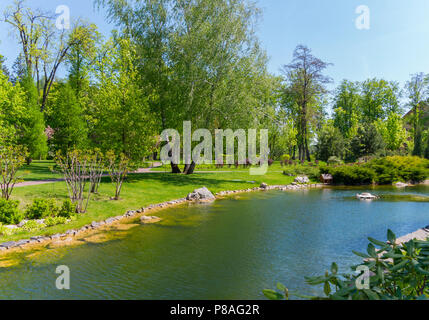 A beautiful summer day in a park with a light wind raising a small ripple on the surface of the pond and swaying branches of birches growing on the sh - Stock Photo